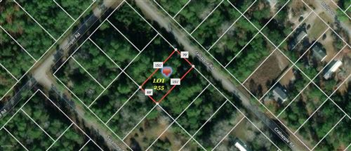 Photo of 371 & 381 Crab Apple Road, Southport, NC 28461 (MLS # 100258203)