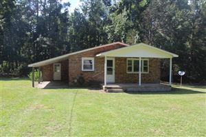 Photo of 286 Holly Shelter Road, Jacksonville, NC 28540 (MLS # 100181208)