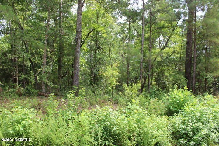 Photo of 254 White Oak Bluff Road, Stella, NC 28582 (MLS # 100251209)