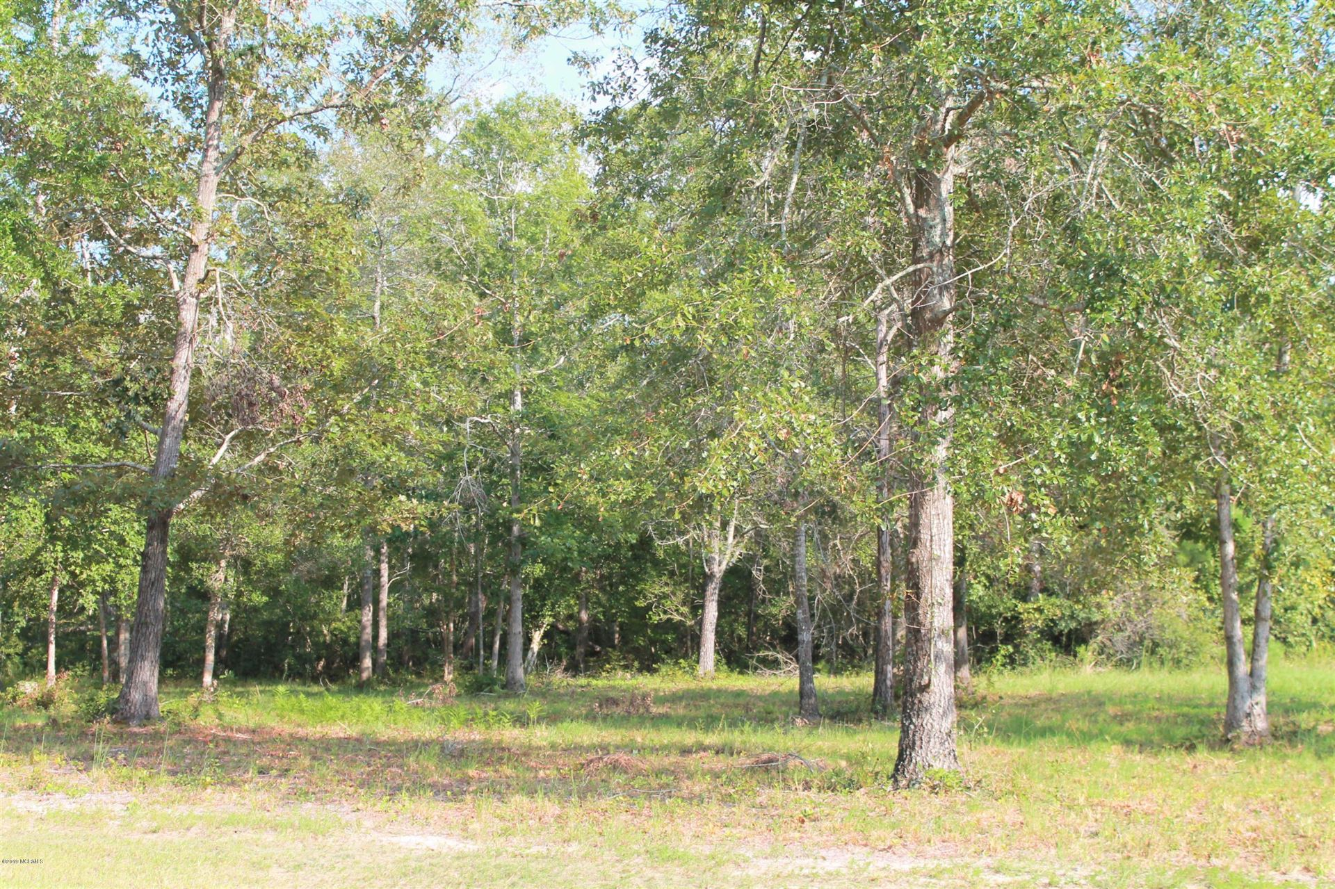 Photo of 584 Sanctuary Point SW, Supply, NC 28462 (MLS # 100108210)