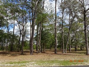 Photo of 126 Genoes Point Road SW, Supply, NC 28462 (MLS # 100156211)