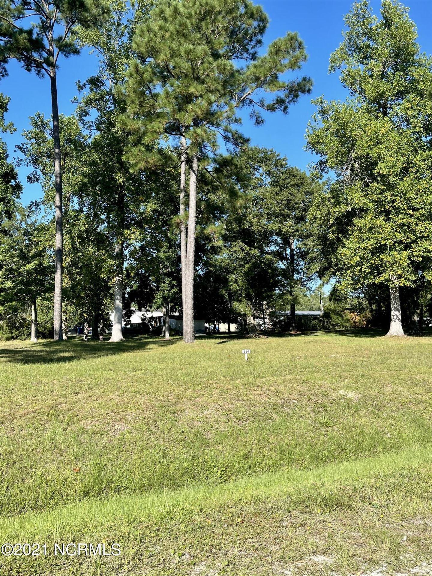 Photo of 114 Shadow Ridge Road, Hampstead, NC 28443 (MLS # 100289212)