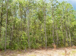 Photo of 000 Doe Drive, Hubert, NC 28539 (MLS # 100178220)