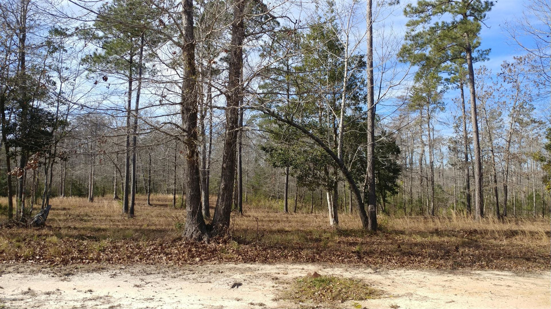 Photo of 557 Sanctuary Point SW, Supply, NC 28462 (MLS # 100199220)