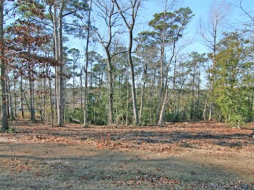Photo of 205 Creek View Circle, Sneads Ferry, NC 28460 (MLS # 40093225)
