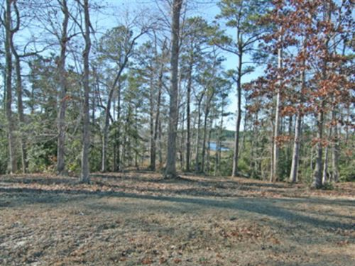 Photo of 203 Creek View Circle, Sneads Ferry, NC 28460 (MLS # 40093226)