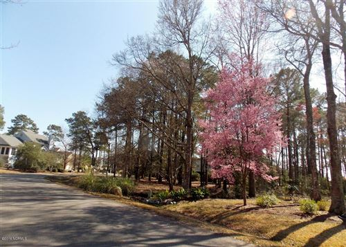 Photo of 4387 Polly Gully Court SE, Southport, NC 28461 (MLS # 100196228)