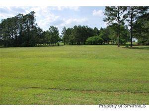Photo of 19 Mill Pond Road, Deep Run, NC 28525 (MLS # 50120229)