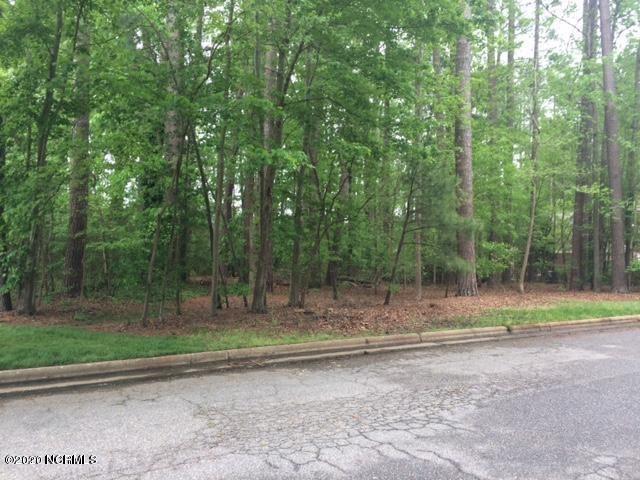 Photo of 813 Nichole Lane, Rocky Mount, NC 27803 (MLS # 100215229)