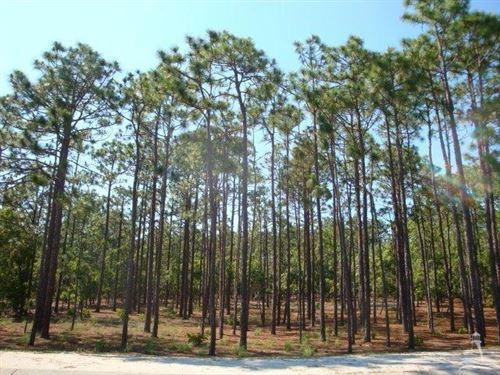 Photo of 2711 Shady Pine Circle, Southport, NC 28461 (MLS # 100204231)