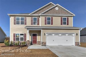 Photo of 313 Old Snap Dragon Court, Jacksonville, NC 28546 (MLS # 100157235)
