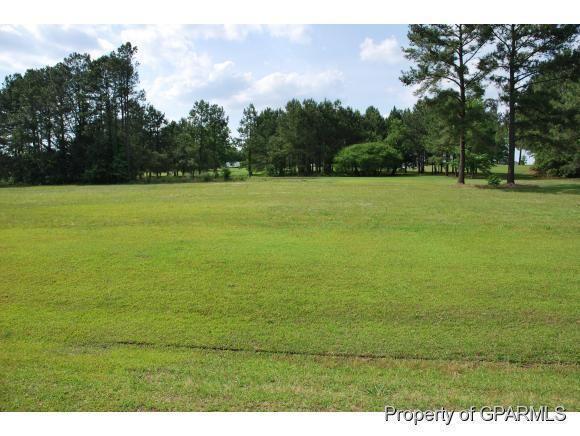 Photo of 23 Mill Pond Road, Deep Run, NC 28525 (MLS # 50120235)