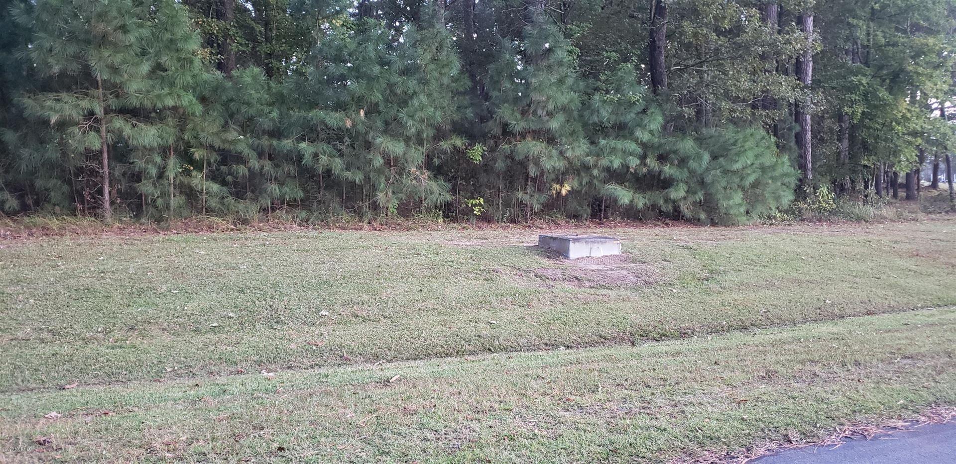 Photo of Pinetown, NC 27865 (MLS # 100242243)