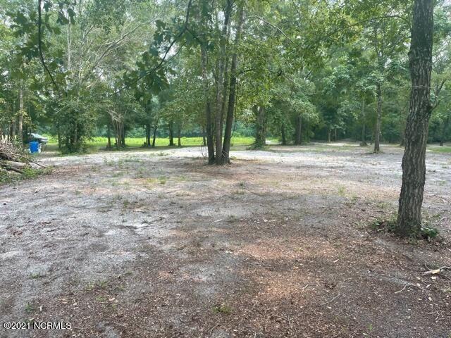 Photo of 3r White Tail Lane, Watha, NC 28478 (MLS # 100283243)