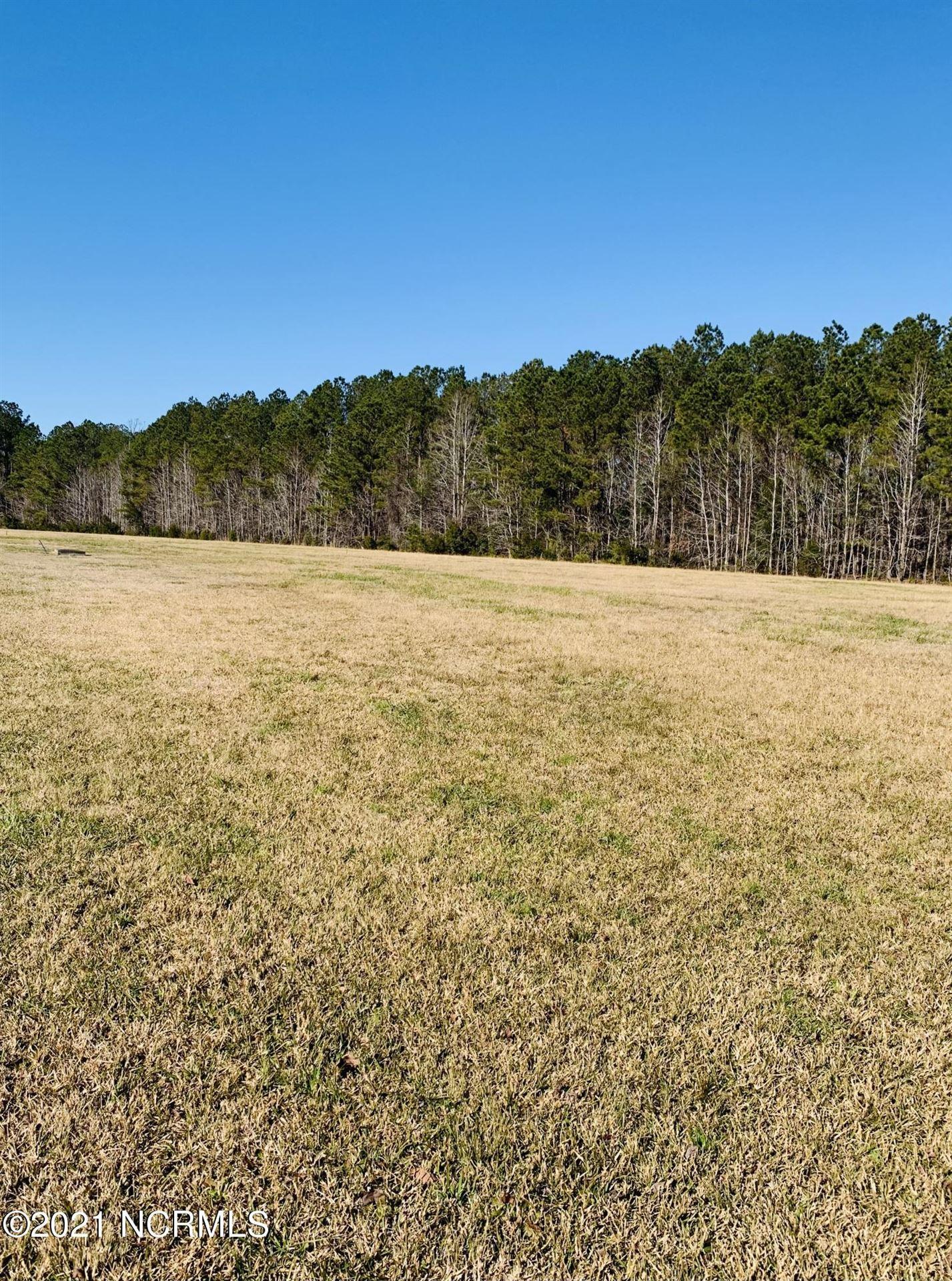 Photo of 680 Southern Plantation Drive N, Oriental, NC 28571 (MLS # 100252250)