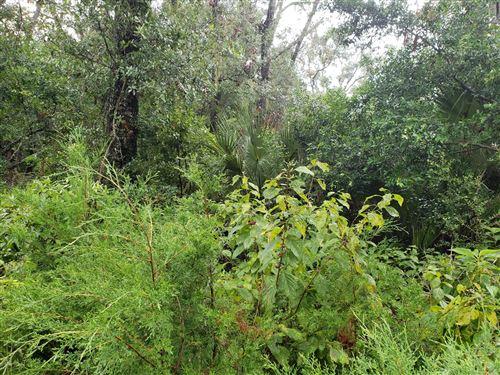 Photo of 79 Cape Creek Road, Bald Head Island, NC 28461 (MLS # 100237254)