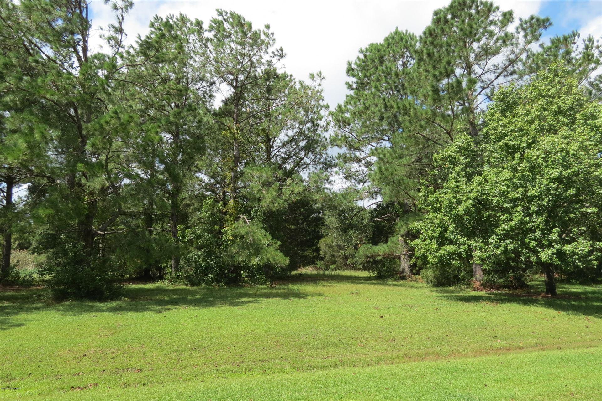 Photo of 246 Silver Acres Road, Merritt, NC 28556 (MLS # 100184255)
