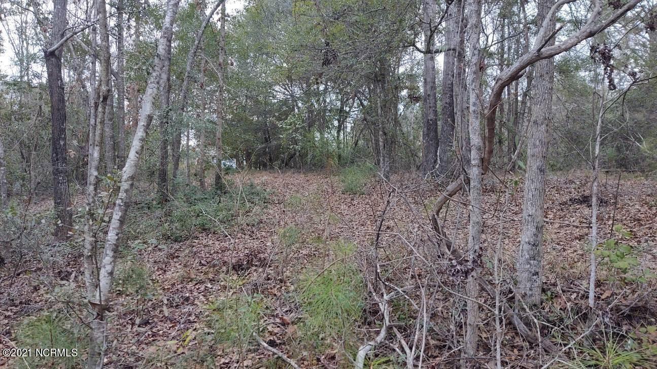 Photo of 158 Beagle Drive, Hubert, NC 28539 (MLS # 100253256)