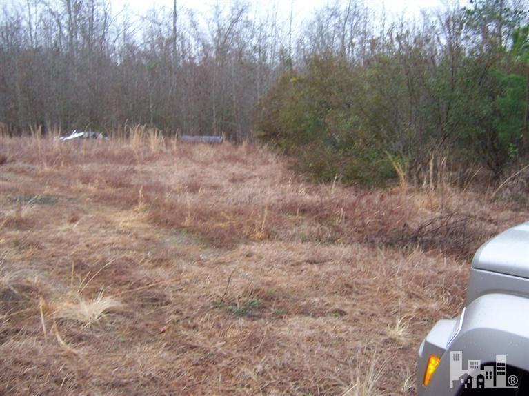 Photo of 40.38 Acre Larkins Road, Rocky Point, NC 28457 (MLS # 30502259)