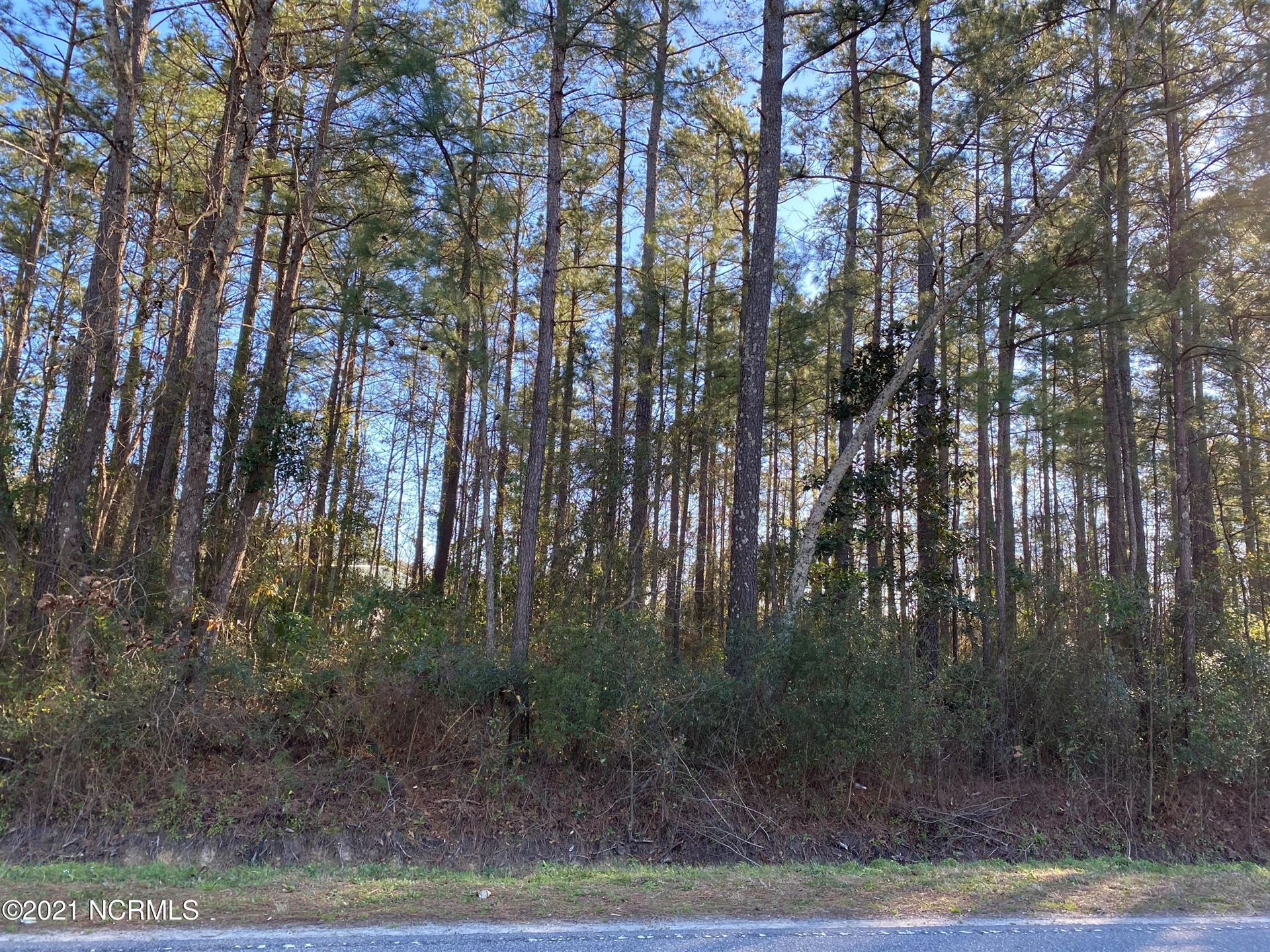 Photo for Lot B Carver Drive, Rocky Point, NC 28457 (MLS # 100255260)