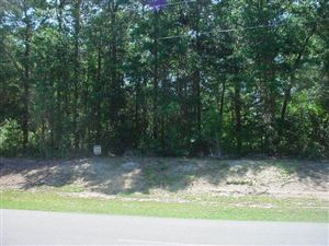 Photo of 778 Chadwick Shores Drive, Sneads Ferry, NC 28460 (MLS # 40089264)