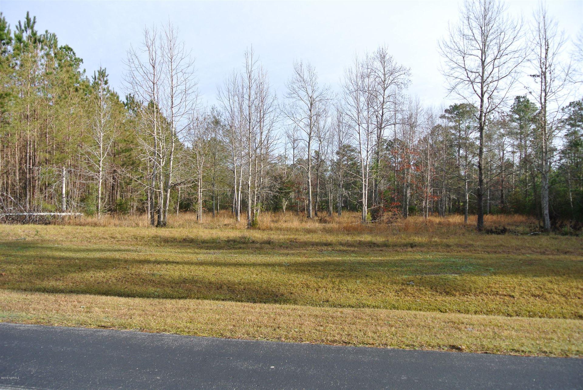 Photo of 187 Garbacon Drive, Beaufort, NC 28516 (MLS # 100275264)