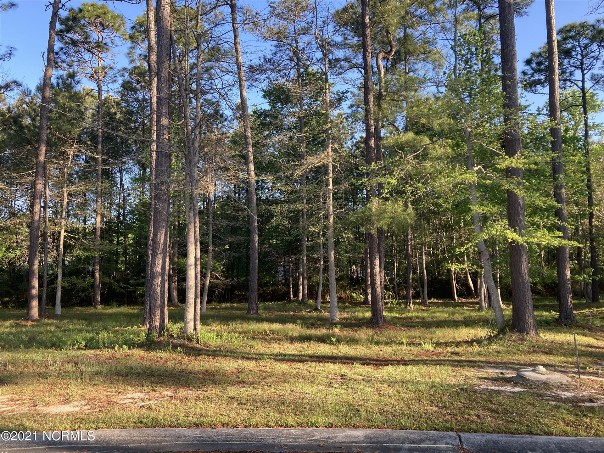 Photo of 324 River Wynd Drive, Shallotte, NC 28470 (MLS # 100268267)