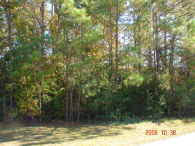 Photo for 305-1 Crosswood Drive, Holly Ridge, NC 28445 (MLS # 40202270)