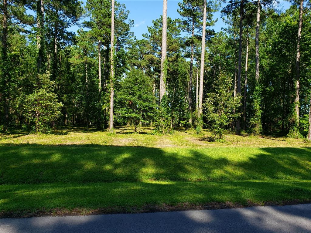 Photo of 251 Trent Creek Drive, Merritt, NC 28556 (MLS # 100171275)