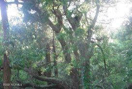 Photo of 116 Stede Bonnet Wynd, Bald Head Island, NC 28461 (MLS # 100271277)