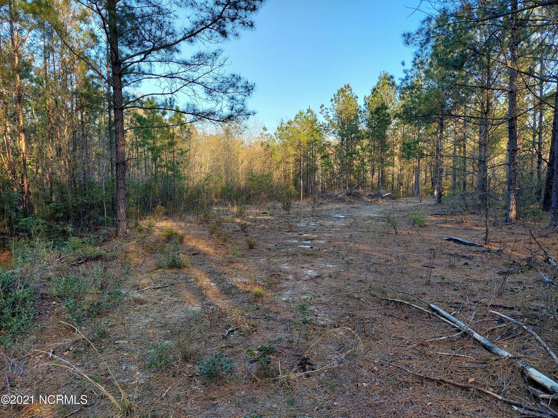 Photo of 0 Battleground Road, Atkinson, NC 28421 (MLS # 100265277)