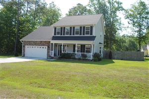 Photo of 710 Cattail Court, Jacksonville, NC 28540 (MLS # 100166279)
