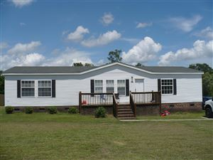 Photo of 113 Cypress Knee Drive, Richlands, NC 28574 (MLS # 100175283)