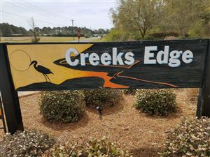 Photo of 228 Egret Point Drive, Sneads Ferry, NC 28460 (MLS # 100108286)