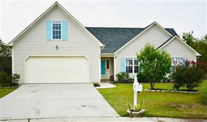 Photo of 7320 Grizzly Bear Court, Wilmington, NC 28411 (MLS # 100180294)