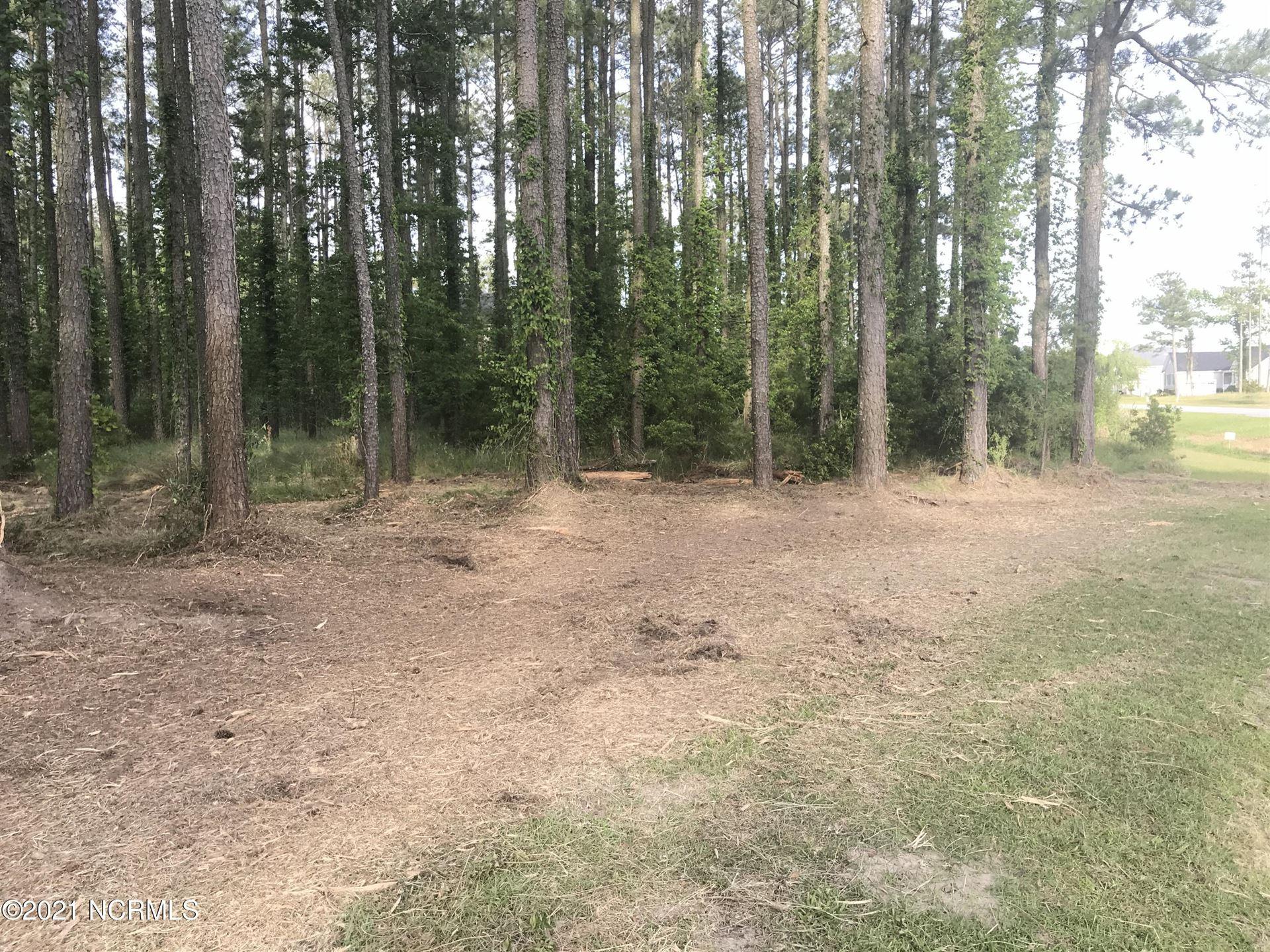 Photo of Lot 59 Dowry Creek W, Belhaven, NC 27810 (MLS # 100218295)