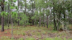 Photo of Lot 3 Shelby Road, Southport, NC 28461 (MLS # 100133306)