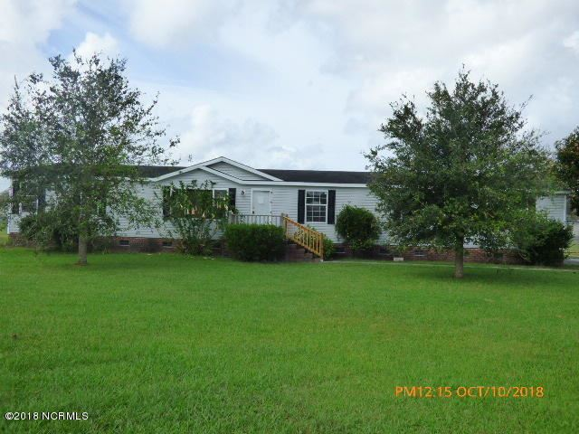 Photo for 313 Chickory Court, Stella, NC 28582 (MLS # 100136311)
