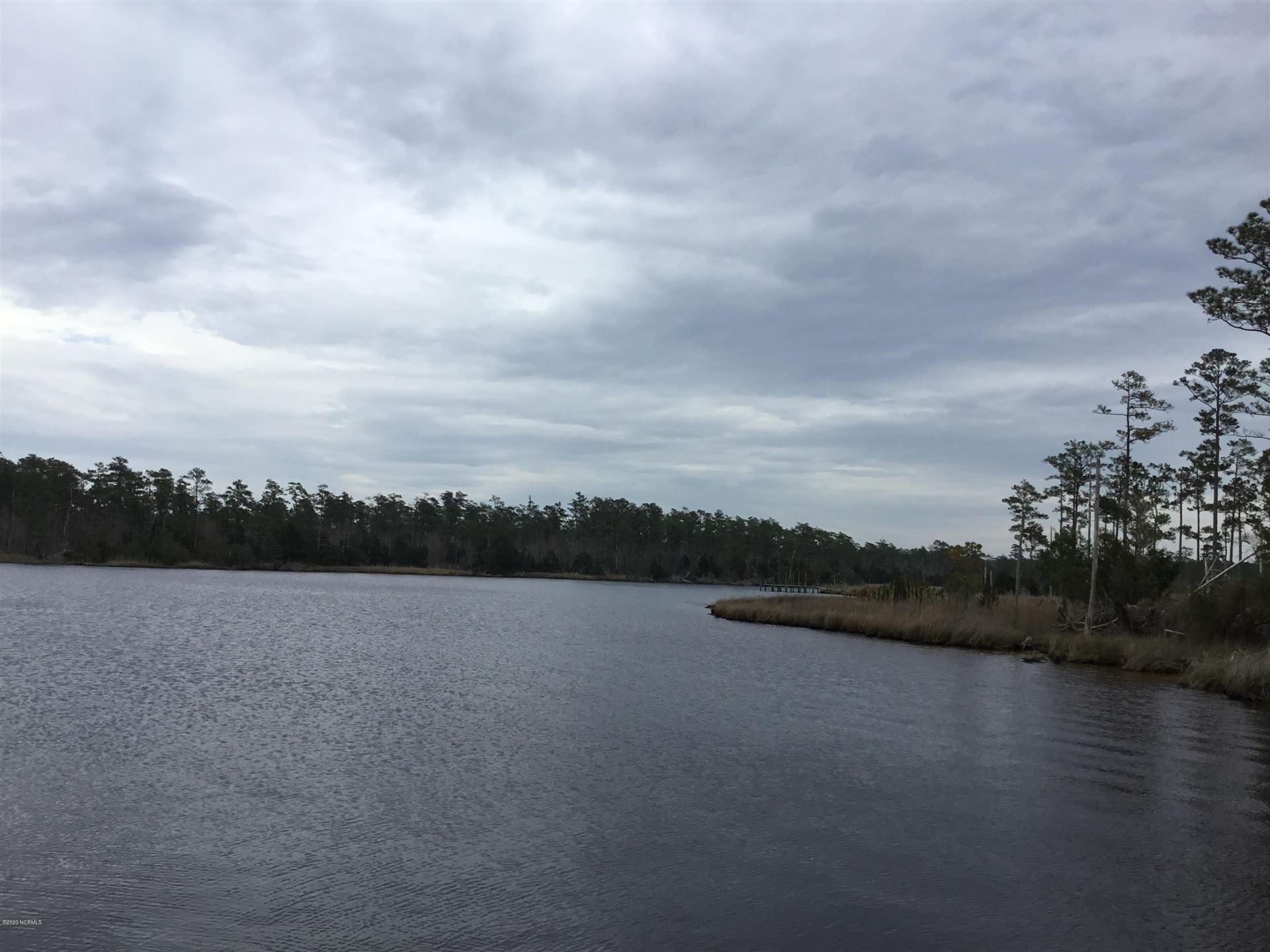 Photo of 219 Timber Point Drive, Merritt, NC 28556 (MLS # 100209311)
