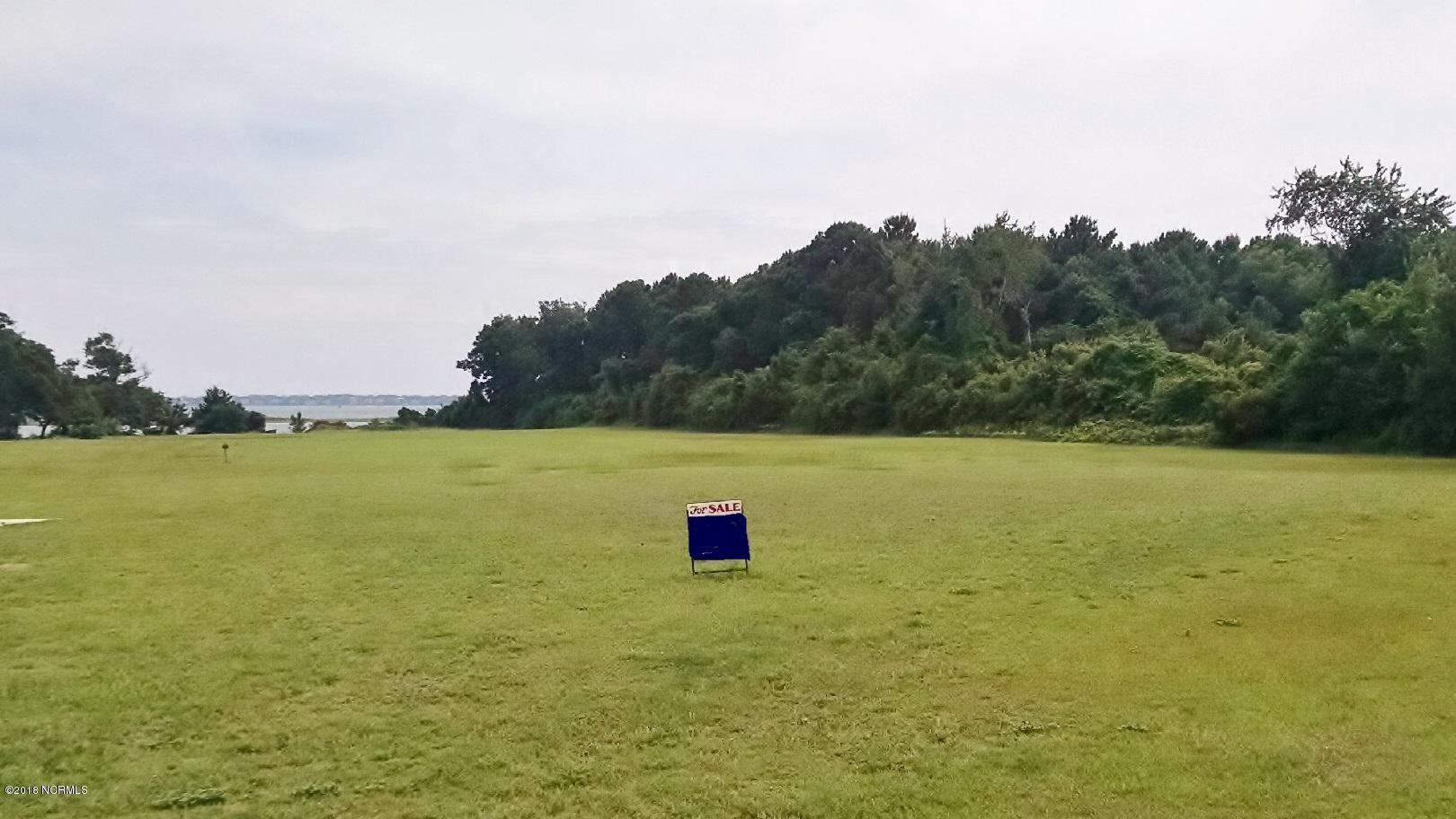 Photo of 705 Camp View Court, Newport, NC 28570 (MLS # 100013313)