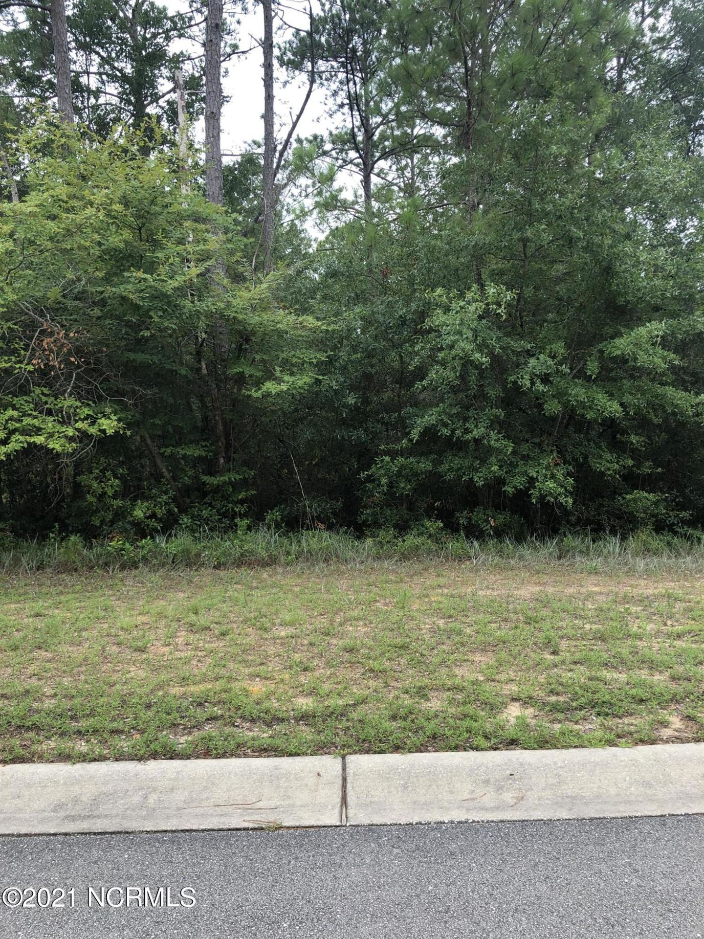 Photo of 1090 Ferry Landing Drive SW, Supply, NC 28462 (MLS # 100286318)