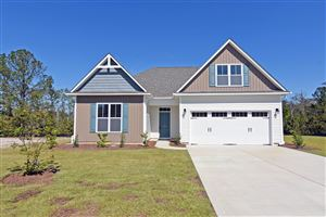 Photo of 490 Avendale Drive, Rocky Point, NC 28457 (MLS # 100156325)