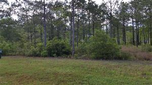 Tiny photo for 310 E Dolphin View, Sneads Ferry, NC 28460 (MLS # 100066326)