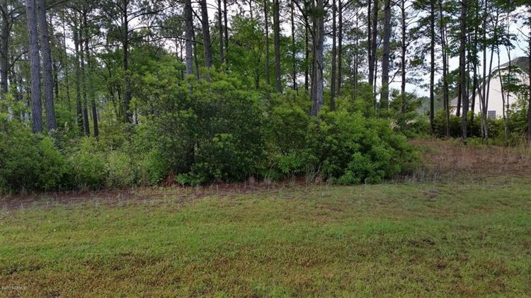 Photo of 310 E Dolphin View, Sneads Ferry, NC 28460 (MLS # 100066326)