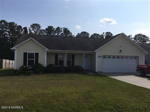 Photo of 134 Christy Drive, Beulaville, NC 28518 (MLS # 100175328)
