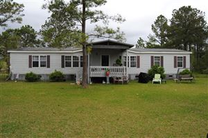 Photo of 227 Brians Woods Road, Maple Hill, NC 28454 (MLS # 100161329)