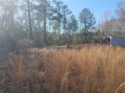 Photo of 2575 Slocum Trail, Atkinson, NC 28421 (MLS # 100201332)