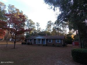 Photo of 173 Pinewood Drive, Arapahoe, NC 28510 (MLS # 100169335)
