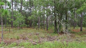 Photo of Lot 4 Shelby Road, Southport, NC 28461 (MLS # 100133338)
