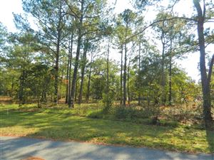 Photo of 3055 Pine Hill Drive SW, Shallotte, NC 28470 (MLS # 100037345)